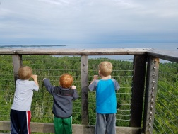 Boys overlook