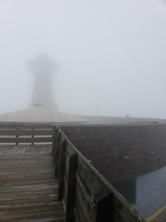 Me in Fog
